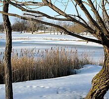 Pre-Season Course View by kenspics