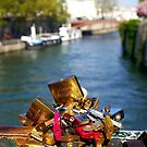 Love locks in Paris by naranzaria