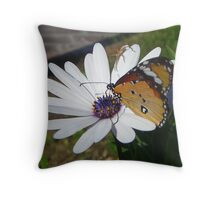 White Daisy and Butterfly Throw Pillow