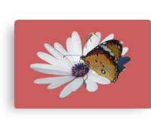 White Daisy and Butterfly Vector Background Removed Canvas Print