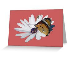 White Daisy and Butterfly Vector Background Removed Greeting Card