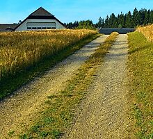 A trail, a farm and summer | landscape photography by Patrick Jobst