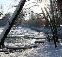 Winter Scenes, River View 1 by SeanVan