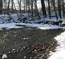 Winter Scenes, River Bends by SeanVan