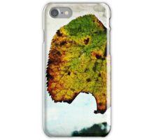 November Leaf iPhone Case/Skin