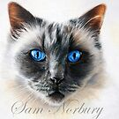 Oliver by Samantha Norbury