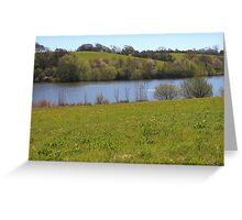 Spring Meadow Near The lake Greeting Card