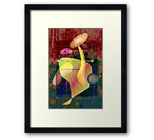Don Genaro Framed Print
