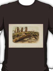 James Audubon - Quadrupeds of North America V2 1851-1854  Little Harvest Mouse T-Shirt