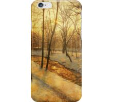 Winter on the Olza River iPhone Case/Skin