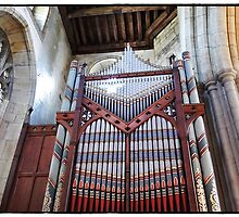 The beautiful Organ by Malcolm Chant