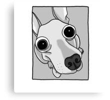 Funny Dog Canvas Print