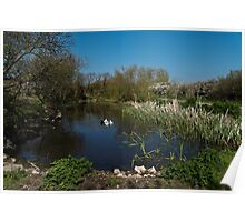 Farm Pond Poster