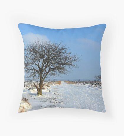 Fochteloerveen in Winter Throw Pillow