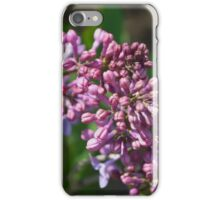 Lilac Blossom 1 iPhone Case/Skin