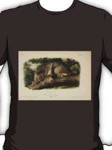 James Audubon - Quadrupeds of North America V1 1851-1854  Canada Lynx T-Shirt