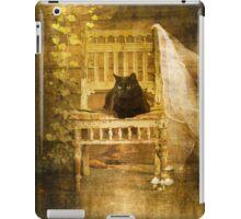 Cat On The Porch iPad Case/Skin