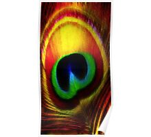 Peacock Eye Feather Poster