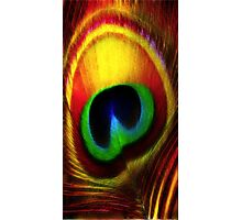 Peacock Eye Feather Photographic Print
