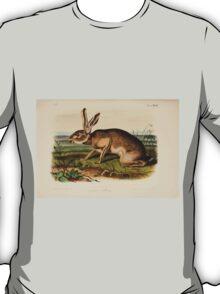 James Audubon - Quadrupeds of North America V3 1851-1854  Texian Hare T-Shirt