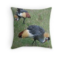 Southern (Grey) Crowned Cranes, Ngorongoro Crater, Tanzania Throw Pillow