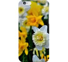White and Yellow Daffodils in the Abstract iPhone Case/Skin