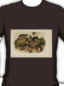 James Audubon - Quadrupeds of North America V2 1851-1854  Borwn or Norway Rat T-Shirt