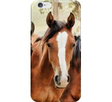 The yearlings iPhone Case/Skin
