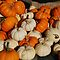 Market - Mini Pumpkins by rabeeker