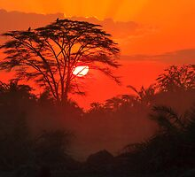 African Sunrise, Amboseli National Park, Kenya, Africa. by photosecosse /barbara jones