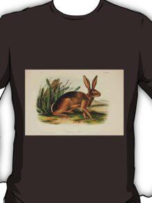 James Audubon - Quadrupeds of North America V3 1851-1854  Californian Hare T-Shirt