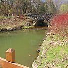 Mill Creek Bridge by Jack Ryan