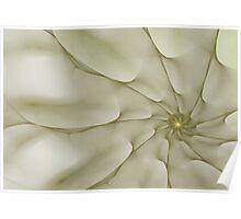 White Spiral Flower Poster