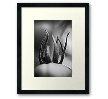 displacement Framed Print