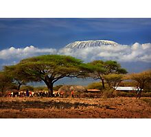 Kilimanjaro, and the Acacia Trees. Kenya, Africa. Photographic Print