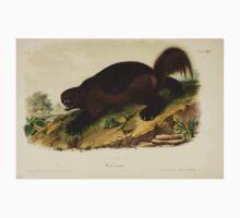 James Audubon - Quadrupeds of North America V1 1851-1854  Wolverine One Piece - Short Sleeve