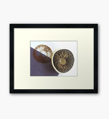 Spore Printing Framed Print