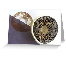 Spore Printing Greeting Card