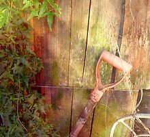 Old Shovel by Tibby Steedly