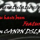 Banner for Canon DSLR by Larry Trupp