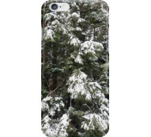 Weighted branches iPhone Case/Skin