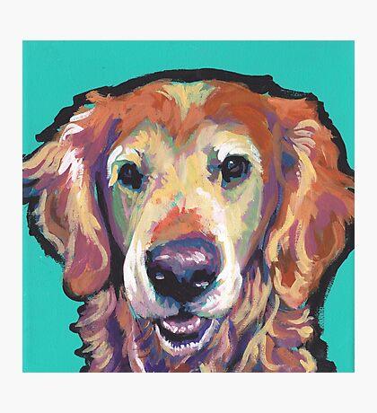 Senior Golden Retriever Dog Bright colorful pop dog art Photographic Print