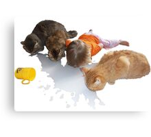 Cats and Toddler Milk friends Canvas Print