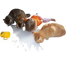 Cats and Toddler Milk friends Photographic Print