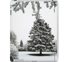 The fir tree iPad Case/Skin