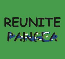 Reunite Pangea  by Kimberly Temple