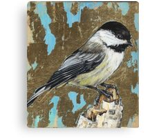 bird 2 - Black capped Chickadee Canvas Print