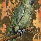bird 6 - Parrot by Joe Helms