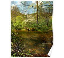 North Carolina Mountain Spring Poster