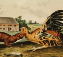 James Audubon - Quadrupeds of North America V3 1851-1854  Tawny Weasel Sticker